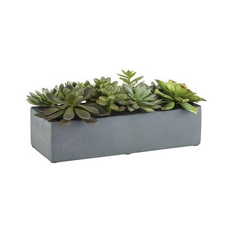 artificial succulents in a pot crate and barrel