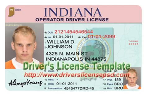 free drivers license template drivers license drivers license drivers license psd indiana drivers license indiana