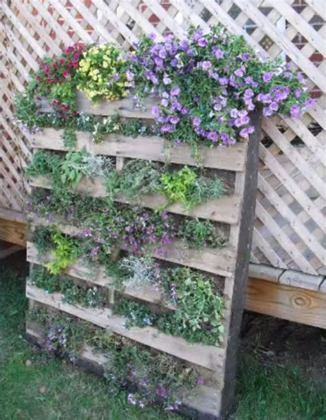 How To Build A Vertical Pallet Garden by How To Build A Pallet Vertical Garden Gardentipz