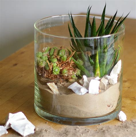 Im Glas Dekorieren by Welche Blumen Im Glas Pflanzen Blumen Dekoration Ideen