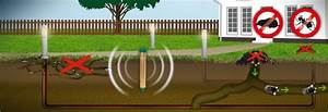 Spitzmäuse Im Garten : maulwurf ameisen abwehr vibration gardigo ~ Lizthompson.info Haus und Dekorationen