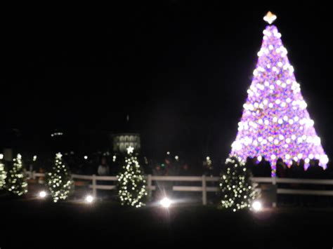 The National Christmas Tree 2013 By Flaherty56 On Deviantart