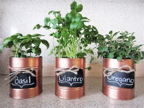 planting tomatoes indoors diy copper tin can planters and chalkboard tags homey oh my
