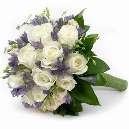 Flower Flowers Bouquet Floral Bokeh Decoration Transparent