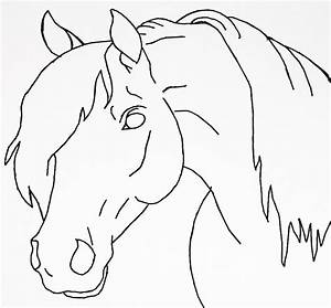 easy how to draw a horse head step by step - Yahoo Image ...