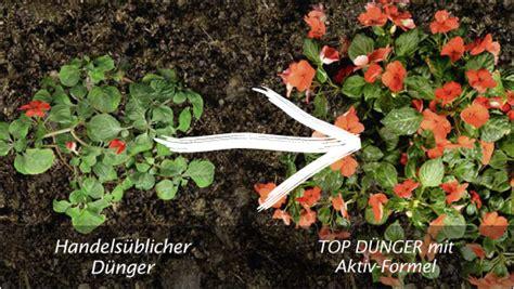 Informationen Zum Trnd-projekt Mit Bayer Garten