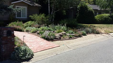 drought free landscaping drought landscape xeriscape drought tolerant landscaping with xerophytic plants with drought