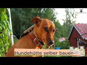 Hundehütten Selber Bauen : hundeh tte selber bauen youtube ~ Eleganceandgraceweddings.com Haus und Dekorationen