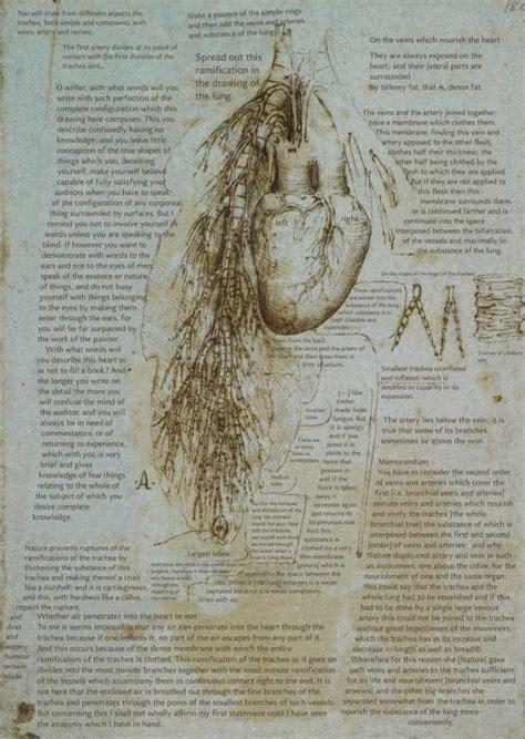leonardo da vinci philosopher and scientist 2
