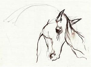 Horse Sketch by Angel Tarantella