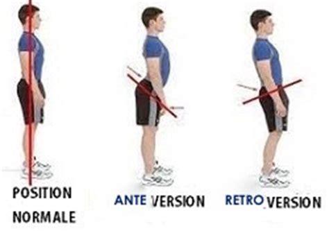 hyper bureau les muscles fléchisseurs de la hanche holistic attitude