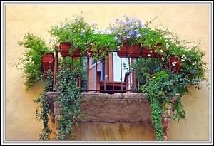 Sichtschutz Balkon Seitlich : sichtschutz balkon seitlich obi balkon house und dekor galerie 2ozymvlz7g ~ Sanjose-hotels-ca.com Haus und Dekorationen