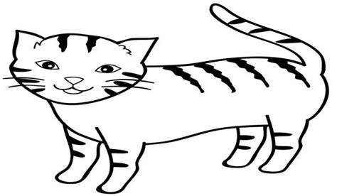 65 gambar mewarnai hewan kucing terlengkap