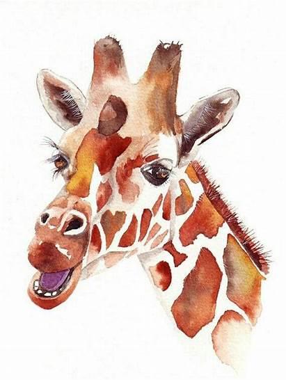 Giraffe Painting Watercolor Colorful Animal Animals Head
