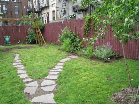 backyard grass alternatives rupturewort a grass alternative drought tolerant and can handle foot traffic secret garden