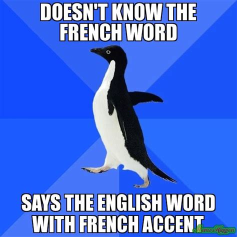 What Is Meme In French - image gallery french memes