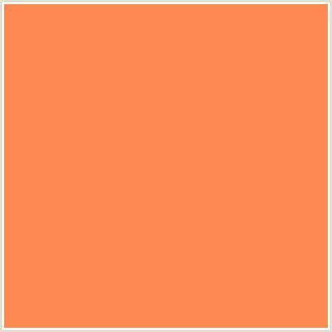 fb8950 hex color rgb 251 137 80 coral orange