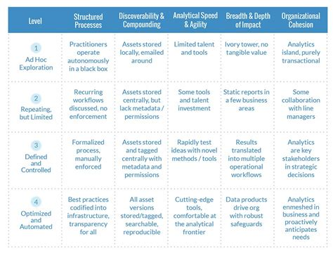 introducing  data science maturity model data science