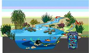 Pumpe Für Bachlauf : oase filtoclear set 30000 oase filtoclear oase ~ Michelbontemps.com Haus und Dekorationen