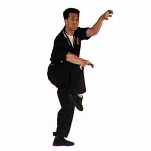 Crane fist kung fu