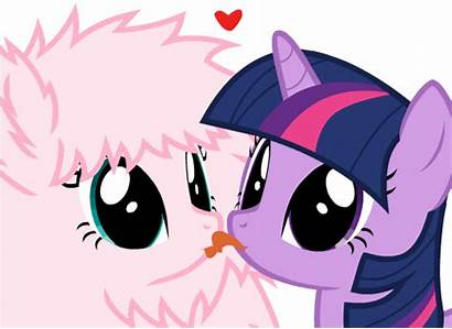 Pony Oc Puff Twilight Gifs Sparkle Fluffle