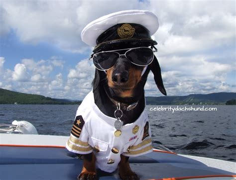 Boat Captain by Dachshunds On A Boat Quot Watchin With Captain Crusoe