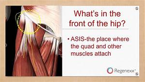 Pain In The Front Of The Hip