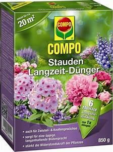 Compo Koniferen Langzeit Dünger : compo stauden langzeit d nger pflanzenfee sterreich ~ Frokenaadalensverden.com Haus und Dekorationen