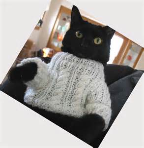 cat sweater cat sweaters