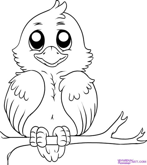 draw  simple bird step  step birds animals