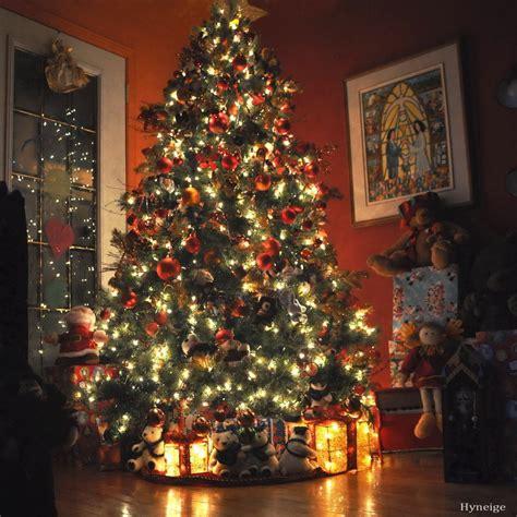 christmas christmas tree design green interior image