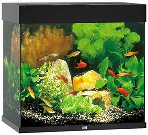 Liter Berechnen Aquarium : juwel aquarien aquarium lido 120 led b t h 61 41 58 cm 120 l in 4 farben online kaufen otto ~ Themetempest.com Abrechnung