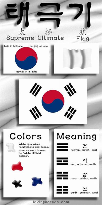 Korean Flag Korea South Meaning Symbol Infographic