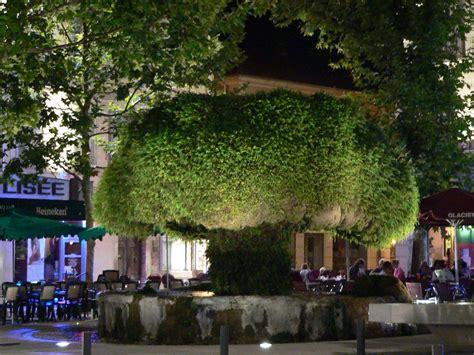 chef de cuisine collective salon de provence prépare un grand festin méditerranéen
