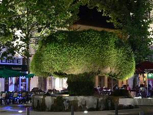 Seat Salon De Provence : salon de provence pr pare un grand festin m diterran en un plus bio premier r seau national ~ Gottalentnigeria.com Avis de Voitures