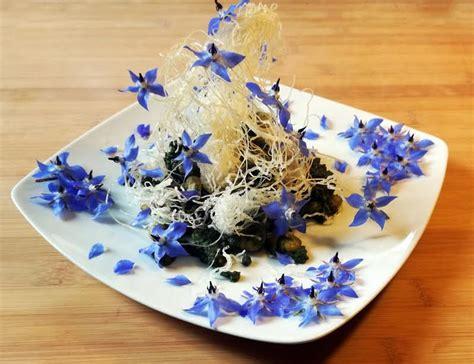 fiori di borragine ricette bouquet di fiori di borragine e gamberetti la gazzetta