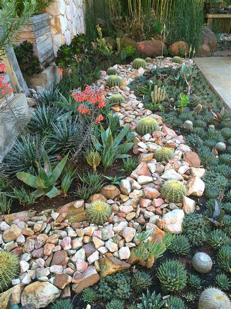 succulent garden ideas   world garden