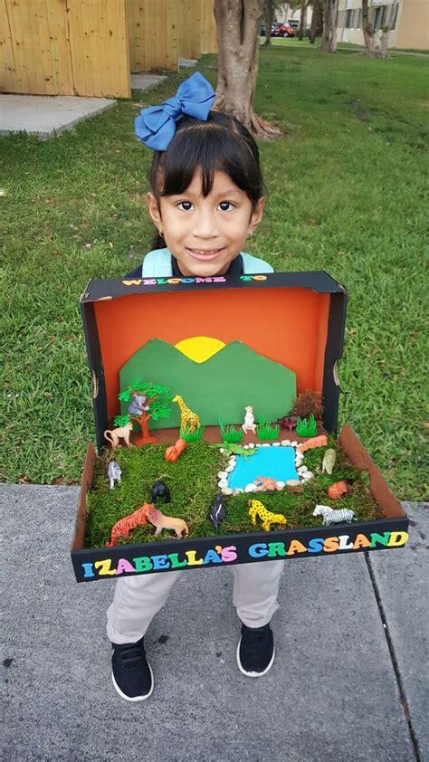 grassland diorama diorama kids science projects