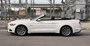 Ford Mustang GT 5.0 Rental in Orlando – American Luxury Orlando