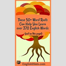 50 Word Roots From Latin
