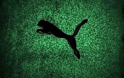 Puma Wallpapers 3d Filename Found 4k Wallpapertag