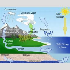 Can You Explain The Processes Of Condensation, Evaporation, And Precipitation In The Water Cycle