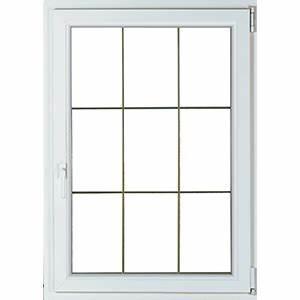 Fenetre 1 Vantail : fen tre 1 vantail fenetre pvc porte de garage ~ Melissatoandfro.com Idées de Décoration