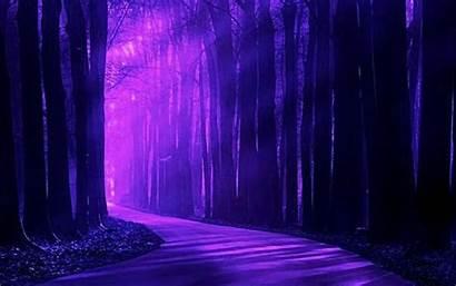 Purple Forest Background Landscape Desktop Scenery Backgrounds