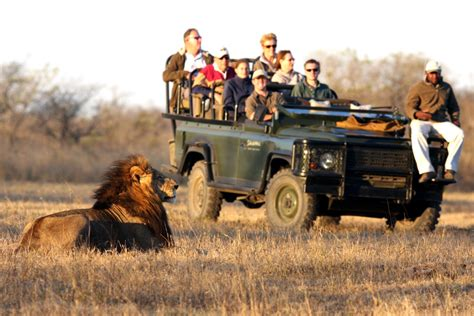 African Safaris For Disabled People. Auto Insurance Rental Car Hand Dryers Reviews. Press Release Email Template Earning A Phd. Phlebotomy Salary Hourly Cable Tv Arlington Va. This Site Is Blocked By The Sonicwall Content Filter Service. Scholarships For Masters Degree In Nursing. Used Auto Loan Interest Rates. Protec Security Services Dallas Injury Lawyer. Electrical Problems Jeep Grand Cherokee