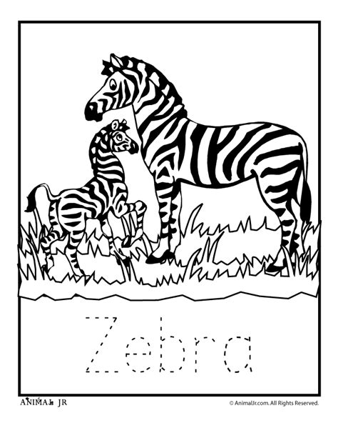 zoo animal coloring pages  letter writing practice
