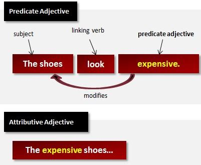 Modified Definition Grammar by What Are Predicate Adjectives Grammar Lesson