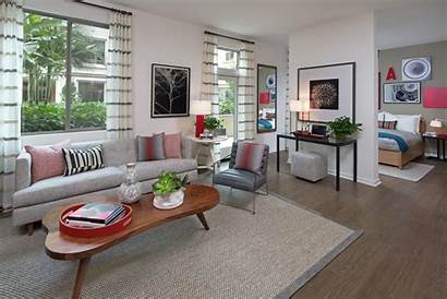 Studio Apartment Apartments Living Homes Rental Irvine