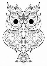 Owl Patterns Coloring Owls Simple Different Adult Animals Various Nature sketch template