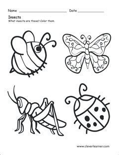 what is an insect worksheets for preschools 391 | color the insects preschool worksheet